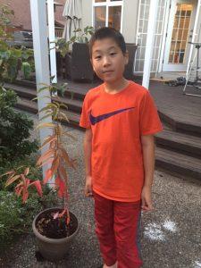 brandons plant